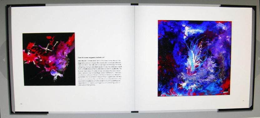 Sample Page2 of Mike Bloom in New Aleatoric Art Book